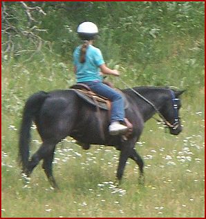 2008 Acorn Valley Ranch 066